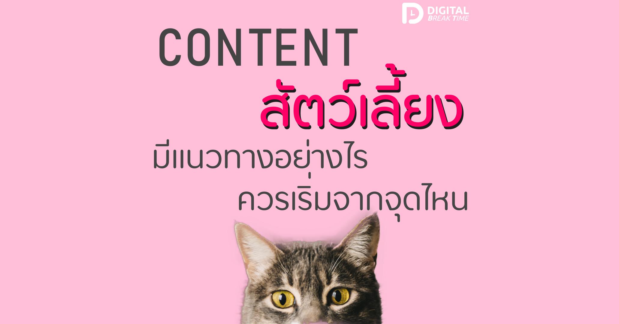 Content Marketing สัตว์เลี้ยง cover